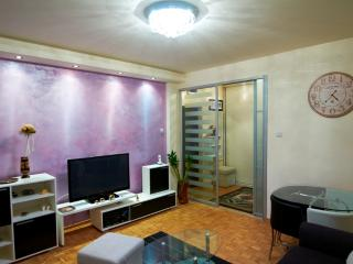 Usce Arena Superb Studio, sleeps 2, WIFI, parking, Belgrade