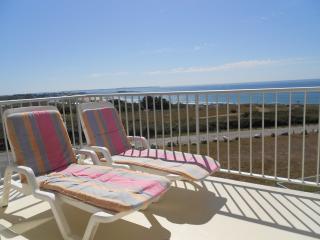 Appart. luxe de 45 m2 sur l'océan en Bretagne Sud, Guidel-Plage