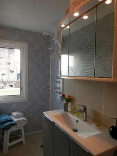 Salle de douche rénovée, nombreux rangements, sèche cheveux, savon, gel douche et shampoing, …