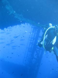 Scuba Diving Experience at Zenobia Shipwreck