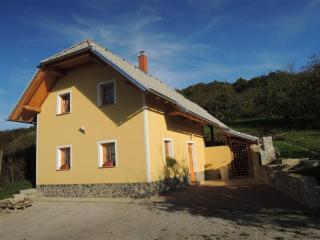 Vineyard cottage - Zidanica Lisec Relaxation, Trebnje
