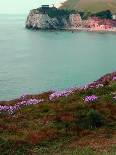 Freshwater Bay - on your doorstep!