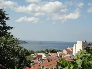 SEA VIEW WITH GARDEN TERRACE, Estambul