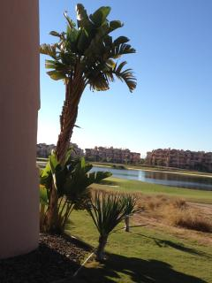 view from the covered terrace on the golf lake