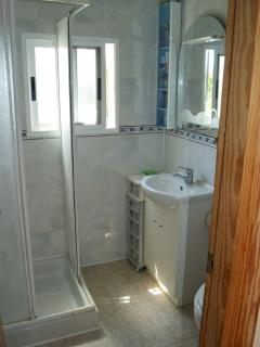 Shower room with toilet and washbasin