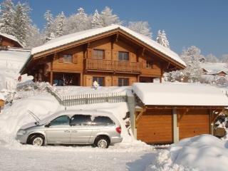 Swiss large very comfortable family chalet, Gryon