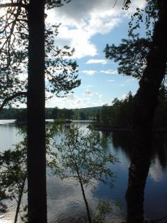 Silences on the lakeside