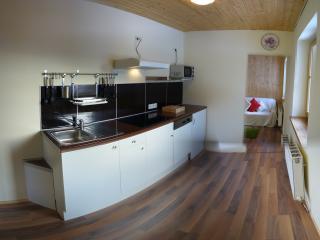 Modern kitchen with dishwasher