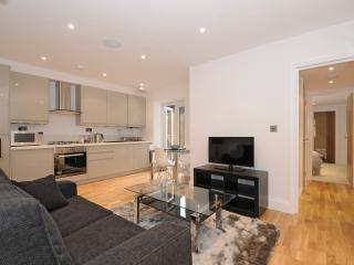 Stylish 2 bedroom central London apt with garden