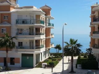 Beach front Aptm, Free unltd WiFi, rooftop pool