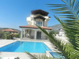 New Age Villa Chetin Near Hisaronu Bar Street