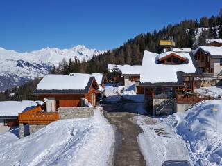 Le Dahu, perfect for skiing and mountainbiking