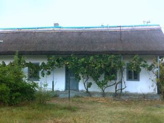 Danube Delta House, Tulcea