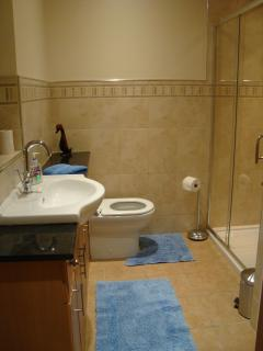 The house bathroom with large walk in shower, situated on the ground floor off the entrance hall.