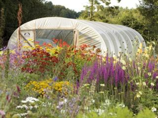 With a passion for organic and local produce, Nessie also runs our specialist nursery.