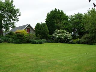 Plenty of space to run around or relax in the garden