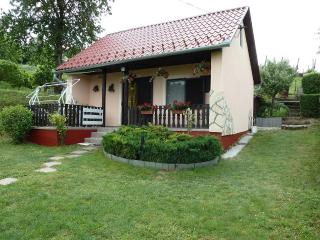 Family house / Thermal SPA TAMASI HUNGARY, Balatonlelle