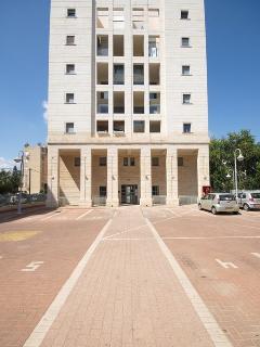 The luxury building