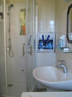 salle de douche qui comporte également les toilettes