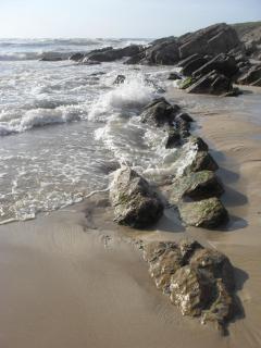 Pedrogaos south beach