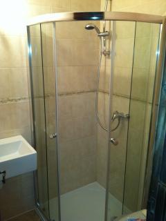 Modern Shower / Wash Room