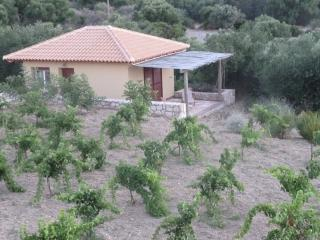 Stand-alone cottage in the Vineyard. Includes Kitchenette plus En-Suite.