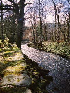 The river Conwy just below Coed y Celyn. A stretch of private River and Grounds