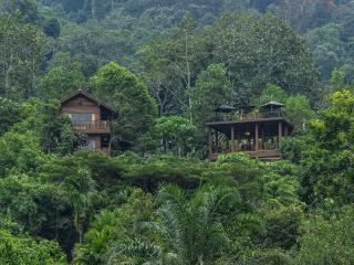 Templer Park Rainforest Retreat - Villa, Rawang