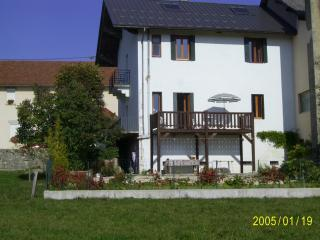 Fantastic House in Small Mountain Village, Hotonnes