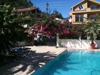 Villa Bougainvillaea gardens with sun bathing area and hammock