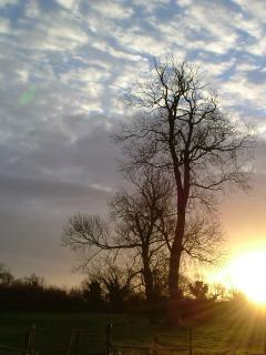 Sunrise over the cottage
