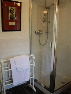 separate power shower in bathroom