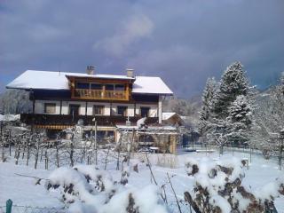 Landhaus Kitzbichler Apt. 5