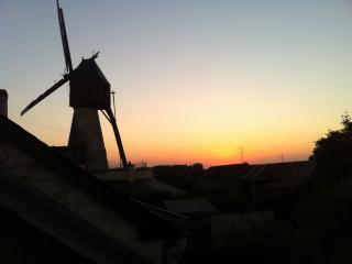 """""""Près du Moulin""""- Grézillé, Les Rosiers sur Loire"""