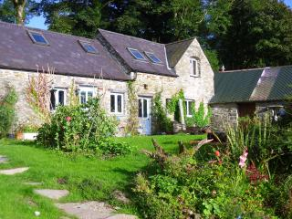 Felindyrch - beautiful quirky rural stone cottage part of old mill smallholding