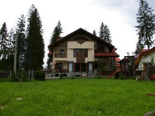Transylvanian Villa, Brasov