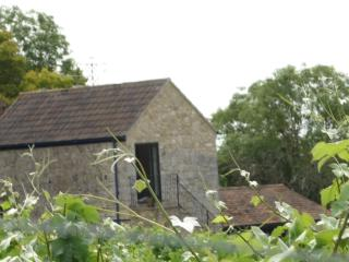 View of the barn from the Vineyard
