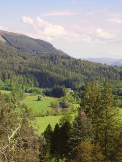 View towards the lodge from Benmore Botanic Gardens