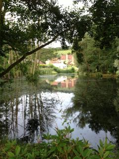 A view from the lake in beautiful grounds
