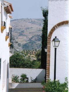 View from secluded terrace