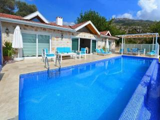 Holiday villa in Islamlar/ Kalkan, sleeps 04 : 093