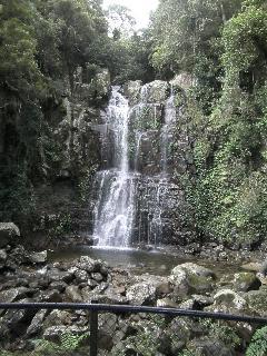 Minnamurra Falls and Rain Forrest