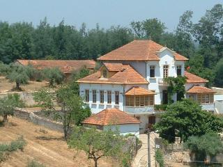 Olive Suites, Penacova