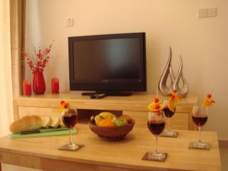 Satellite TV / DVD