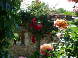 Un jardin de roses et un vieux mur en pierres