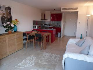 Merle Cozy 1 Bedroom Apartment Rental with a Balcony, Cannes