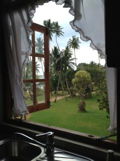 View from the side window