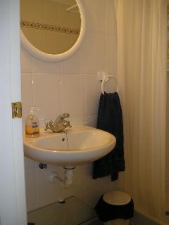 Baño pequeño con ducha, lavabo y sanitario