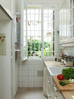 kitchen and the window on the little garden