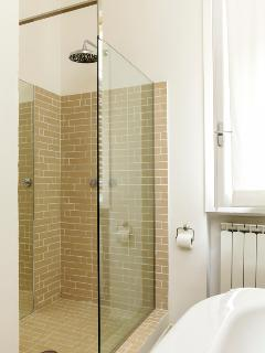 the big shower in the bathroom